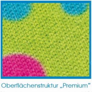 Scheibenschwamm und Display-Reiniger Pemium