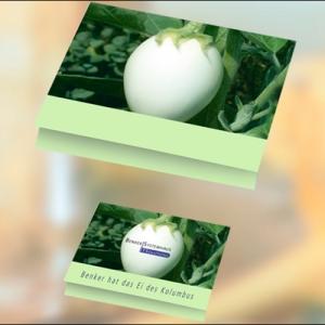 Klappkärtchen mit Samen der Eierbaumfrucht