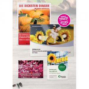 Tütchen voller Blumensamen in verschiedenen Größen - auch als Mailingverstärker geeignet