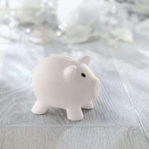 Farbenfrohes Sparschweinchen