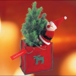 Weihnachtstasche mit echten kleinen Baum